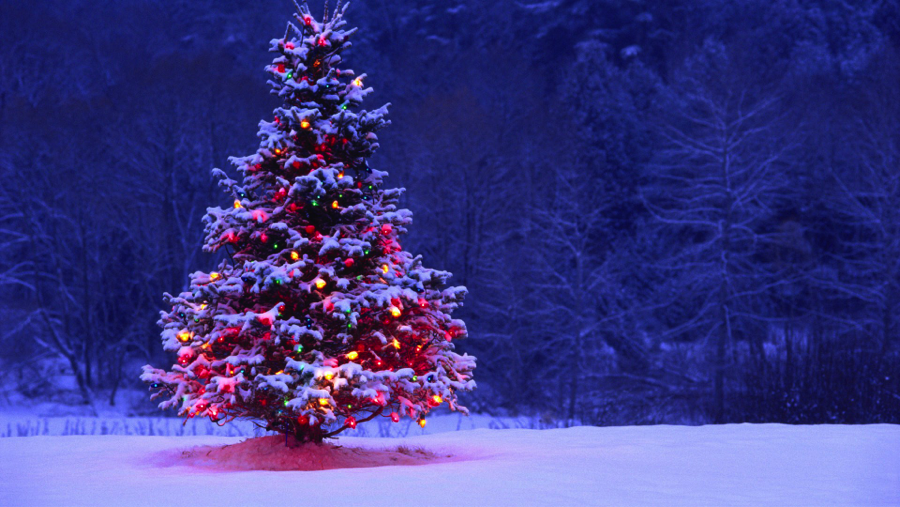 Christmas Meaning.Are We Losing Sight Of The True Meaning Of Christmas